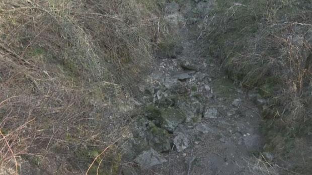 主要的红边束带蛇冬眠洞穴.-加拿大红边束带蛇交配奇景 缠绕雌性