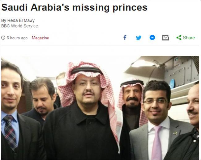 ...,生活在欧洲的沙特王子们陆续失踪图片 44114 650x520